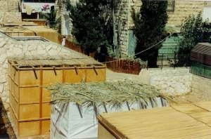 Sukkah_Roofs