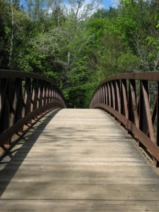pedestrian-bridge-2-1229734